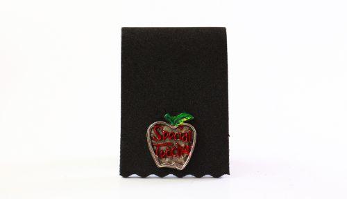 Special Teacher - Apple